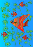 Bright fishes in lake Royalty Free Stock Image