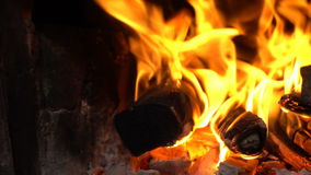 Bright flame of a bonfire stock video