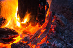 Bright flame of the burning bonfire Royalty Free Stock Photography