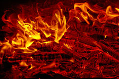 Bright flame of fire Royalty Free Stock Photo