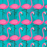 Bright flamingo pattern. Vector seamless pattern with pink flamingos on turquoise background Royalty Free Stock Photo