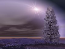Bright Flash over Landscape. Bright Flash over winter Landscape and solice tree Stock Image