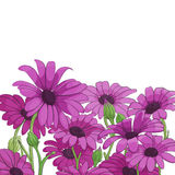Bright floral background Stock Photo