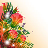 Bright floral Background Royalty Free Stock Photos