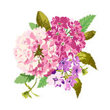 Bright floral bouquet Stock Photography