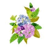 Bright floral bouquet Stock Images