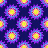 Bright Floral Pattern. Bright purple flowers on the dark background. Vector illustration Stock Photography