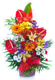 Bright flower bouquet Stock Photos