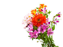 Bright flower bouquet Royalty Free Stock Photo