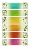 Bright flower coconut paper banner set Royalty Free Stock Photography