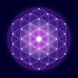 Bright Flower Of Life With Stars Royalty Free Stock Photos