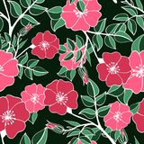 Bright flower seamless pattern with pink hand-drawn colors vector illustration