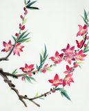 Bright and flowering peach branch royalty free stock photos