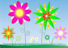 Bright flowers Stock Image
