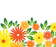 Bright flowers Stock Photography