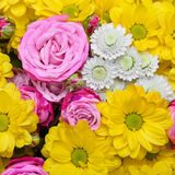 Bright flowers background Stock Images