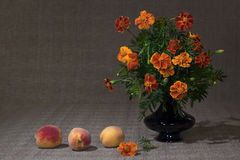 Bright flowers Stock Photos