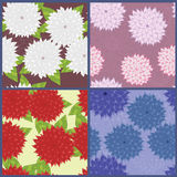 Bright flowers. Dahlia in different pattern royalty free illustration