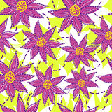 Bright flowers pattern Royalty Free Stock Image