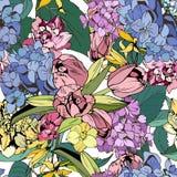 Bright flowers seamless, botanical illustration. Hand drawn Royalty Free Stock Photography
