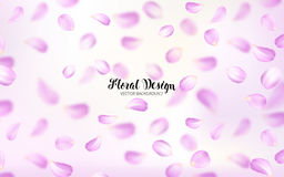 Bright flying petals Light background. Festive banner poster. Celebration pink. Greeting card. Effect Realistic Design Elements. Bright flying petals on a Light Stock Photos