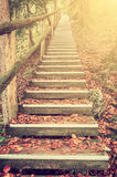 Bright Foliage on Vintage Stairway. Vintage Autumn landscape with bright foliage on stairway, film filter Royalty Free Stock Photos