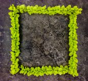 Bright frame of green branches on dark stone background. Top view royalty free stock photography