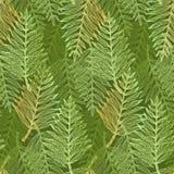 Bright fresh green tropical leaves pattern. Bright fresh green seamless pattern with tropical leaves. Elegant vector accent orange exotic fern leaf texture for vector illustration