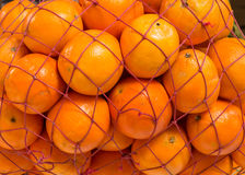 Bright fresh oranges in a net. Oranges in a net sold on a market Stock Image