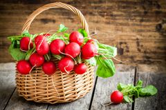 Bright fresh organic radishes with leaves. In a basket on wooden background Stock Photos