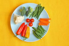 Bright, fresh vegetables on the blue plate Royalty Free Stock Image