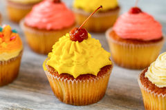 Bright frosted cupcake. Royalty Free Stock Photo