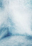 Frozen room Royalty Free Stock Images
