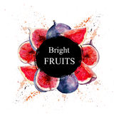 `Bright Fruits` sale and other flyer template with lettering. Watercolor illustration. `Bright Fruits` sale and other flyer template with lettering. Typography Royalty Free Stock Photography
