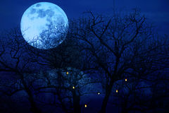 Bright full moon with spooky tree branches background Royalty Free Stock Photo