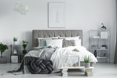 Fully furnished room with plants. Bright fully furnished room with king-size bed and fresh potted plants Royalty Free Stock Image