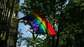 Bright Gay Pride Rainbow Flag NYC. Gay pride rainbow flag flying in bright sun on a leafy green street in Greenwich Village, New York City stock video footage