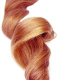 Bright gingery hair curl Royalty Free Stock Photo