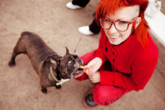 Bright girl feeds a dog Stock Photography