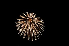 Bright gold firework Stock Photo