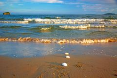 Bright golden sunset on the beach, the waves on the sand, shells. Royalty Free Stock Images
