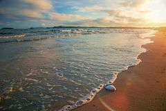 Bright golden sunset on the beach, the waves on the sand, shells. Setting sun Royalty Free Stock Images