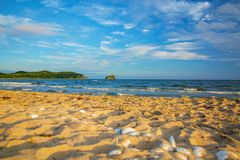 Bright golden sunset on the beach, the waves on the sand, shells. Stock Photos