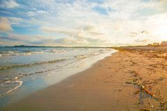 Bright golden sunset on the beach, the waves on the sand, shells. Royalty Free Stock Photos