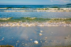 Bright golden sunset on the beach, the waves on the sand, shells. Stock Image