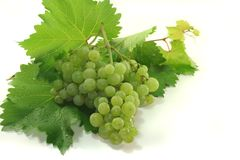Bright grapes Royalty Free Stock Photo
