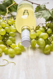 Bright grapes with bottle of white wine and vine leaves on a white wooden background, close up. Bright grapes with bottle of white wine and vine leaves on white stock images