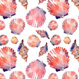 Bright graphic lovely beautiful wonderful summer fresh ocean marine beach colorful seashells and starfishes pattern watercolor han Royalty Free Stock Photos