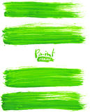 Bright green acrylic brush strokes Stock Images