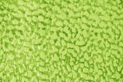 Bright green background Stock Images